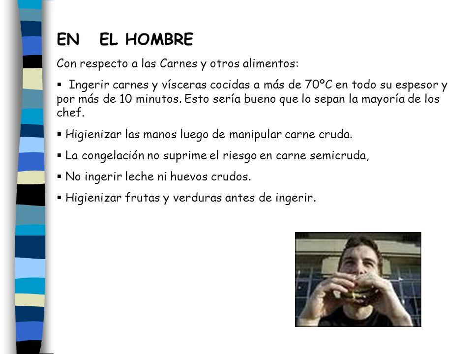 EN EL HOMBRE Con respecto a las Carnes y otros alimentos: