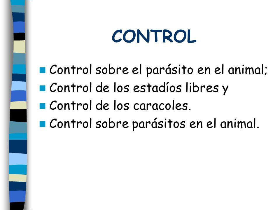 CONTROL Control sobre el parásito en el animal;