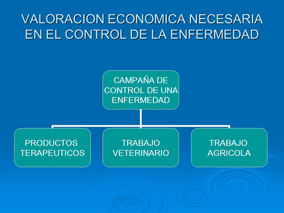 VALORACION ECONOMICA NECESARIA EN EL CONTROL DE LA ENFERMEDAD