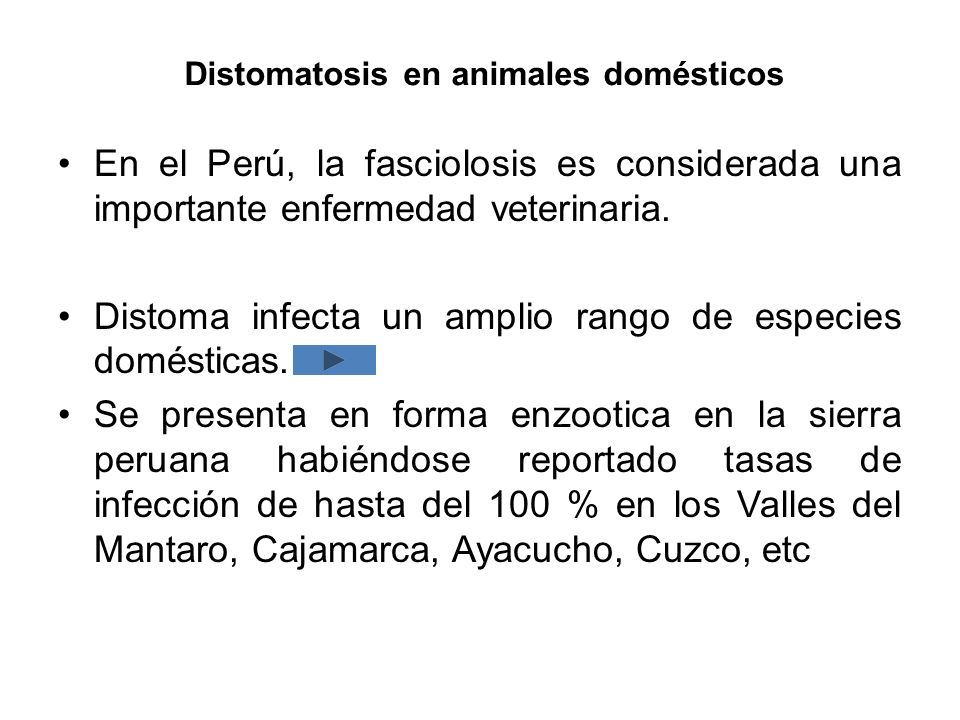Distomatosis en animales domésticos