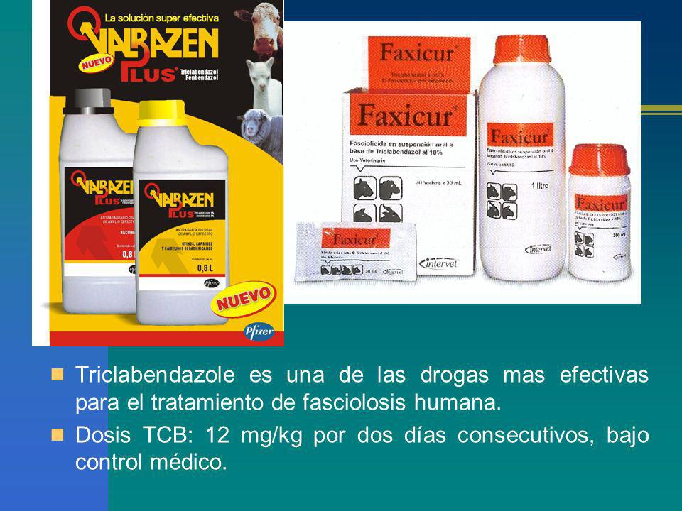 Triclabendazole es una de las drogas mas efectivas para el tratamiento de fasciolosis humana.