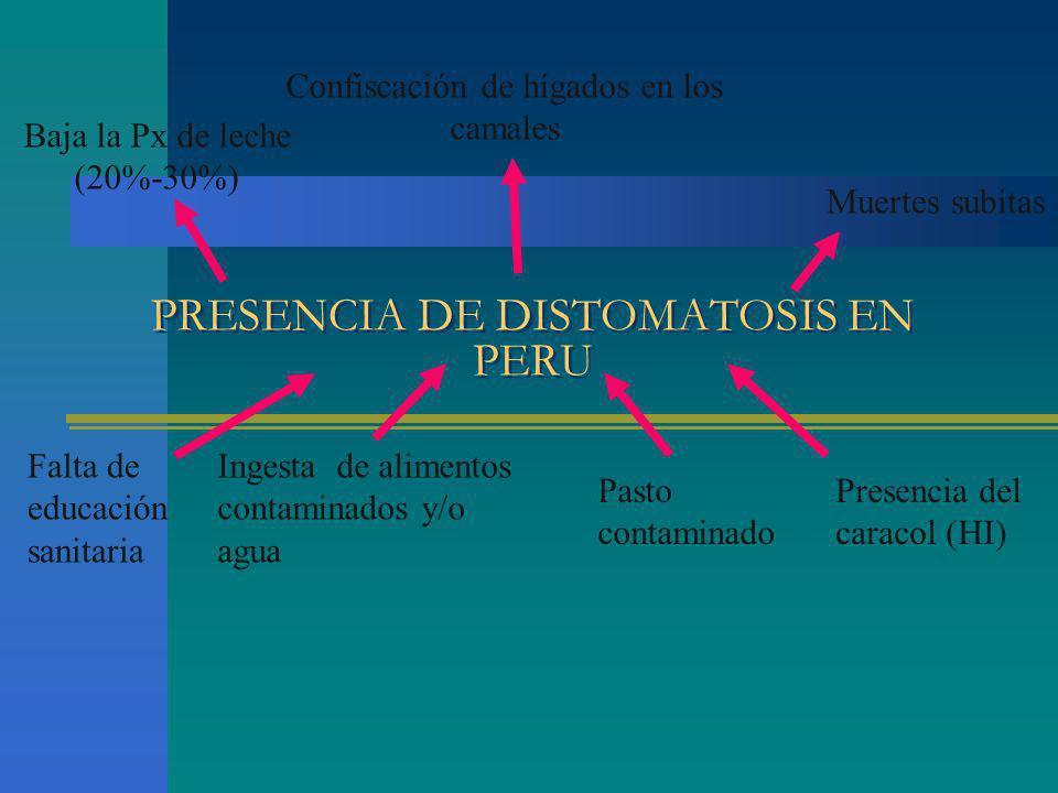 PRESENCIA DE DISTOMATOSIS EN PERU