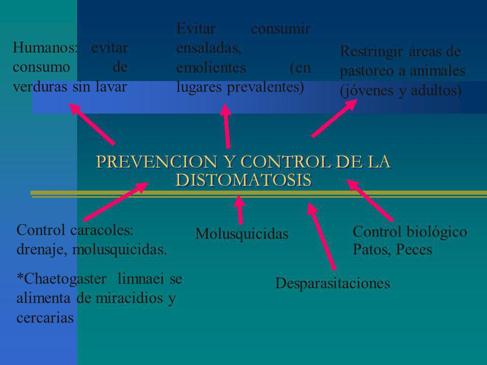 PREVENCION Y CONTROL DE LA DISTOMATOSIS