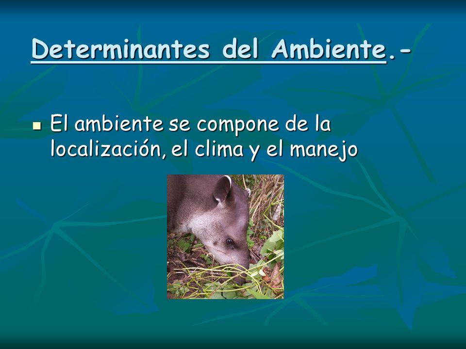 Determinantes del Ambiente.-