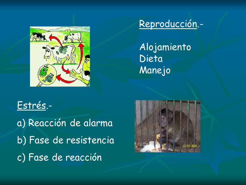Reproducción.- Alojamiento. Dieta. Manejo. Estrés.- a) Reacción de alarma. b) Fase de resistencia.