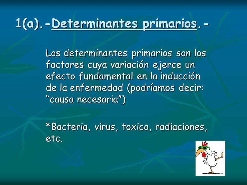 1(a).-Determinantes primarios.-