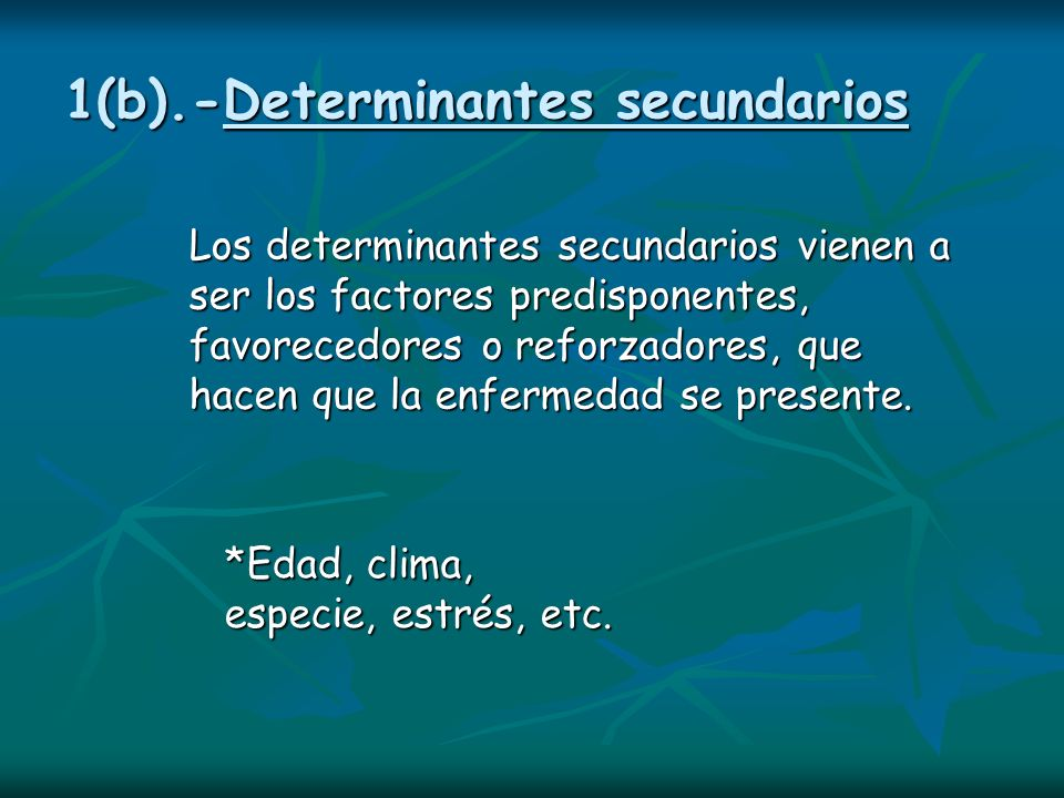 1(b).-Determinantes secundarios