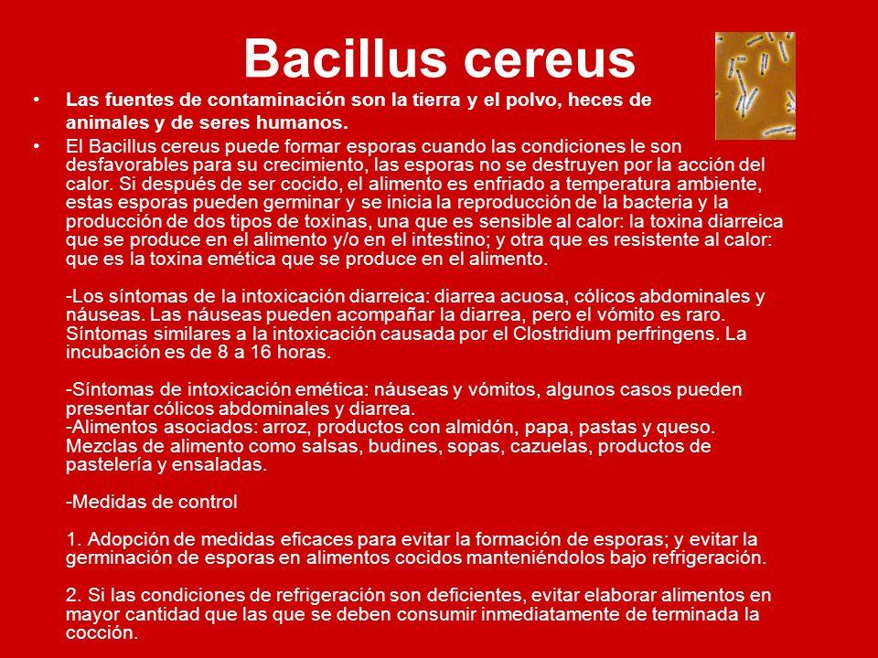Bacillus cereus Las fuentes de contaminación son la tierra y el polvo, heces de. animales y de seres humanos.