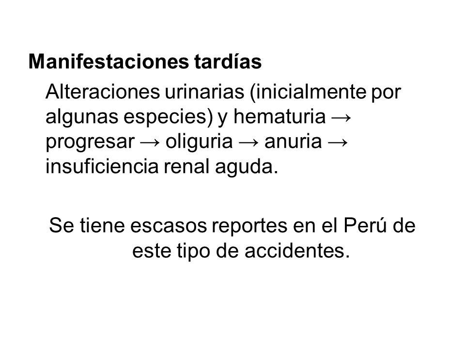 Se tiene escasos reportes en el Perú de este tipo de accidentes.