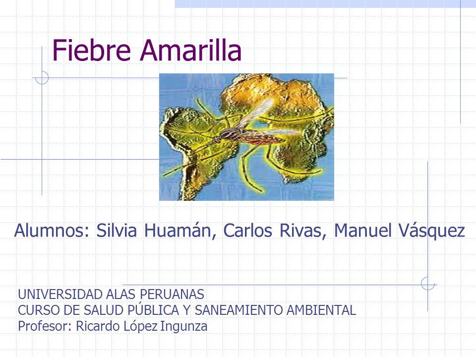 Alumnos: Silvia Huamán, Carlos Rivas, Manuel Vásquez