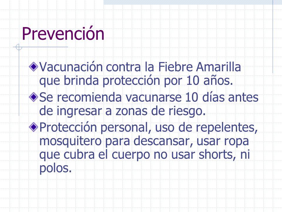 PrevenciónVacunación contra la Fiebre Amarilla que brinda protección por 10 años.