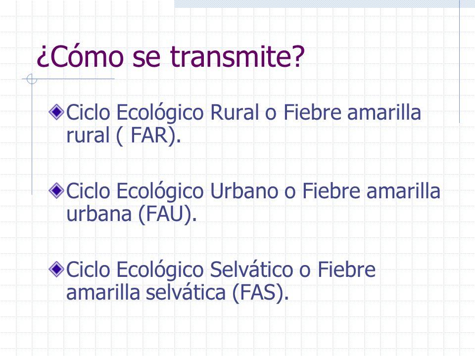 ¿Cómo se transmite Ciclo Ecológico Rural o Fiebre amarilla rural ( FAR). Ciclo Ecológico Urbano o Fiebre amarilla urbana (FAU).