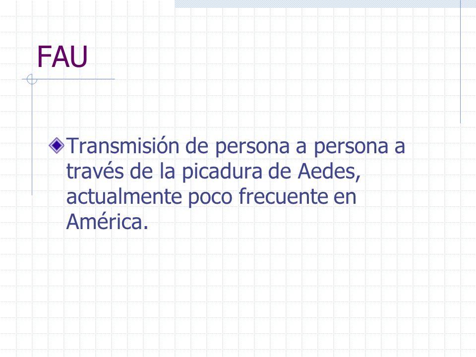 FAUTransmisión de persona a persona a través de la picadura de Aedes, actualmente poco frecuente en América.