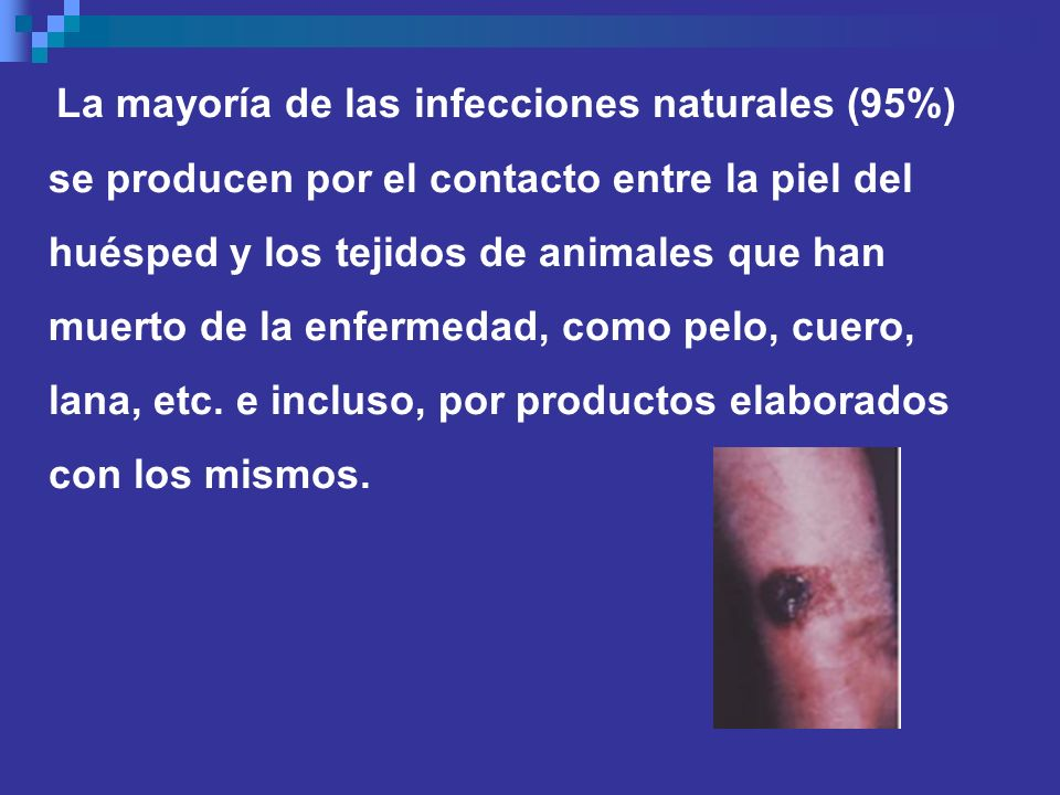se producen por el contacto entre la piel del