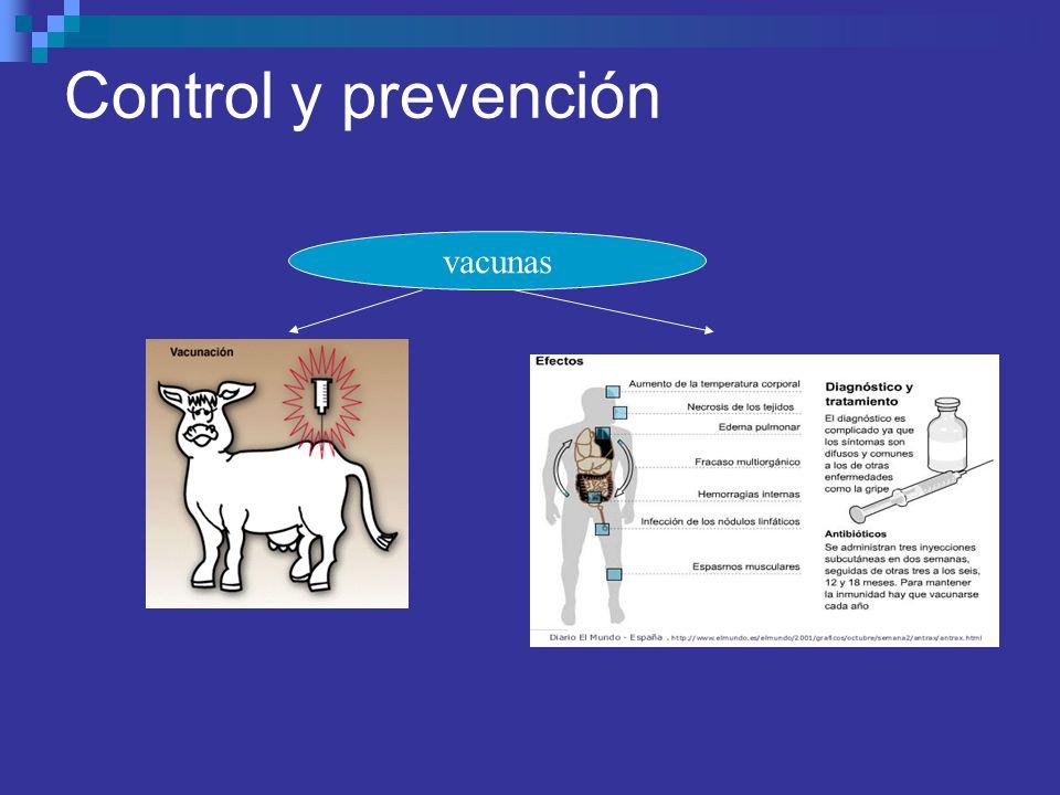 Control y prevención vacunas