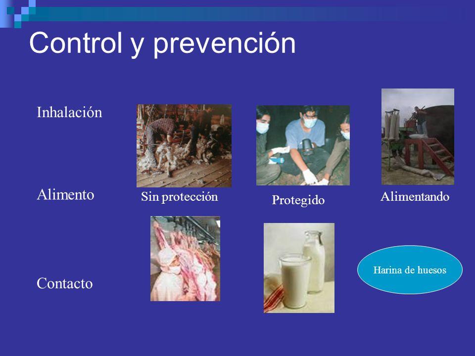 Control y prevención Inhalación Contacto Alimento Sin protección