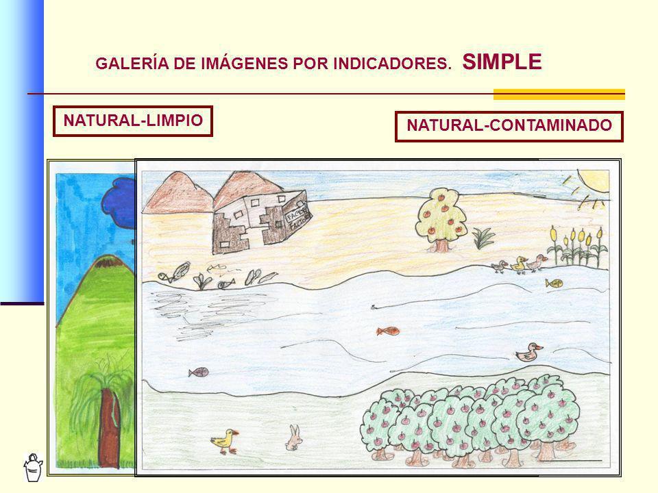 GALERÍA DE IMÁGENES POR INDICADORES. SIMPLE