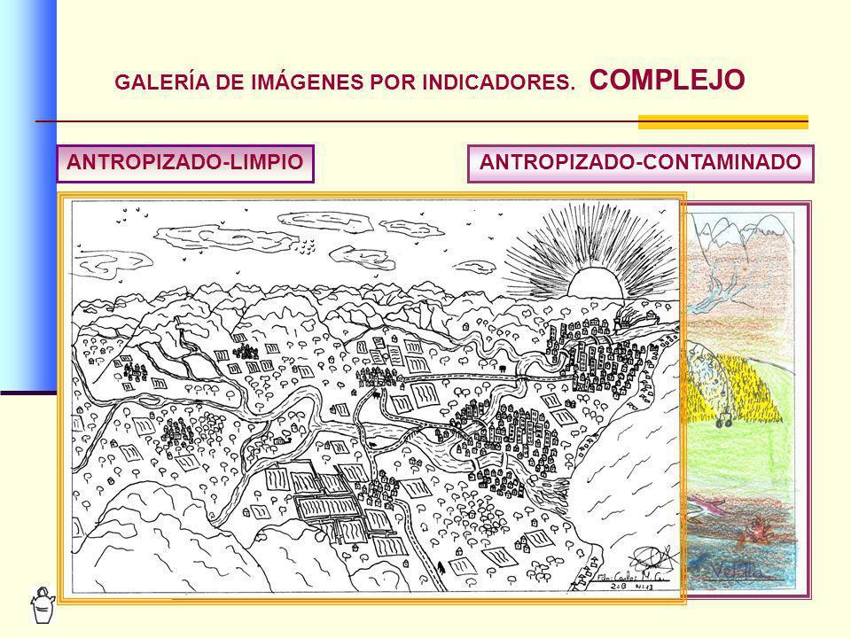 GALERÍA DE IMÁGENES POR INDICADORES. COMPLEJO ANTROPIZADO-CONTAMINADO