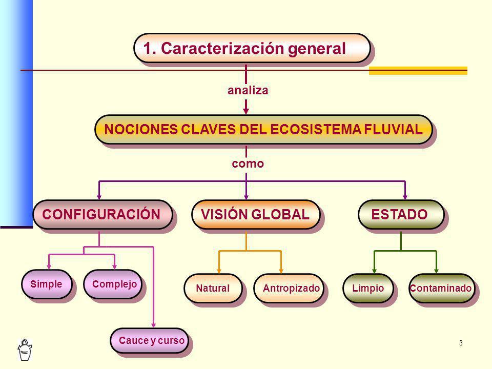 1. Caracterización general