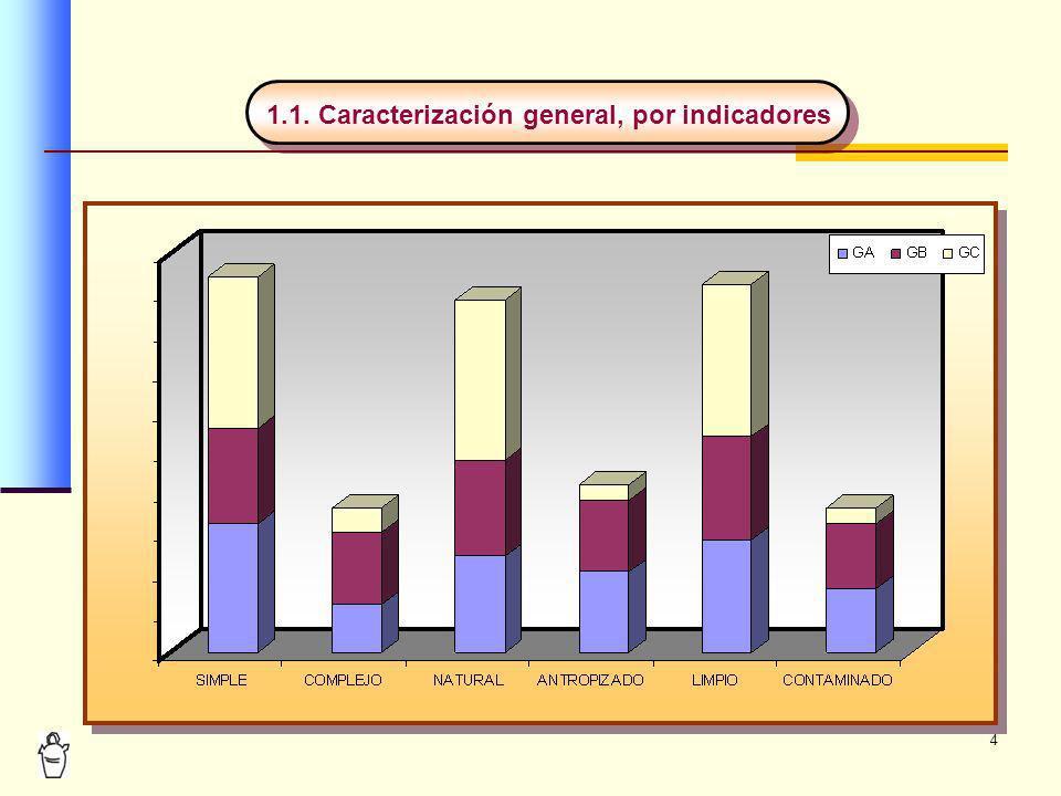 1.1. Caracterización general, por indicadores