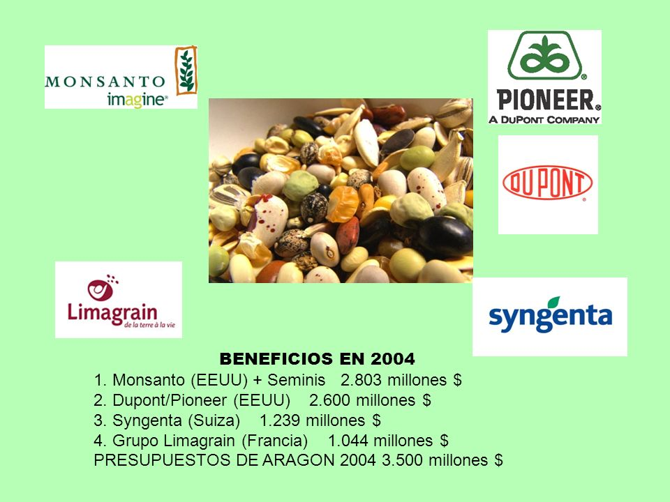 BENEFICIOS EN 2004 1. Monsanto (EEUU) + Seminis 2.803 millones $ 2. Dupont/Pioneer (EEUU) 2.600 millones $