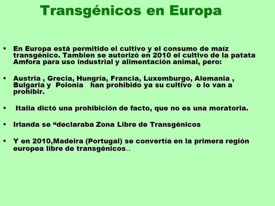 Transgénicos en Europa