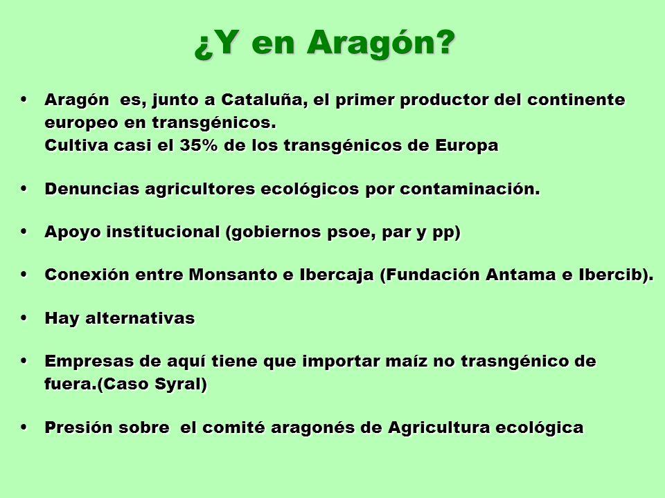 ¿Y en Aragón