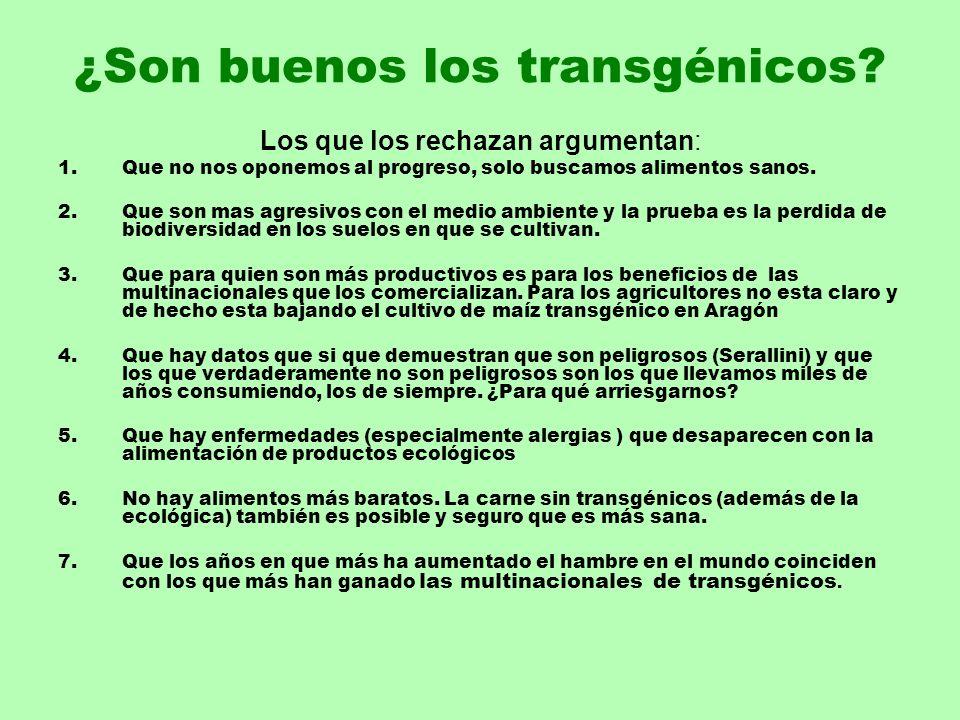 ¿Son buenos los transgénicos