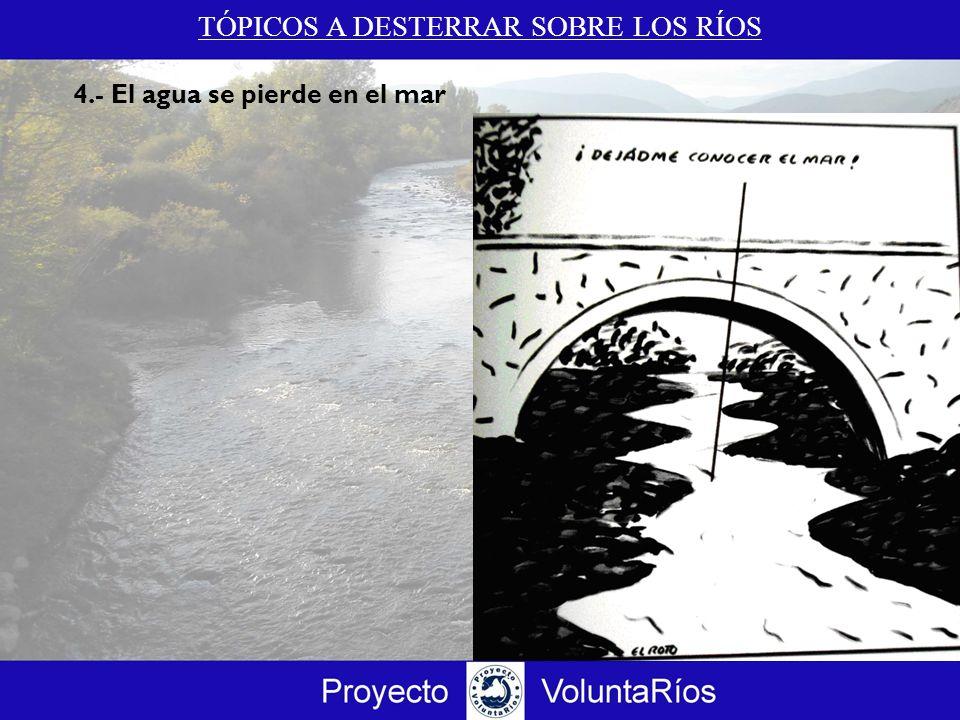 TÓPICOS A DESTERRAR SOBRE LOS RÍOS