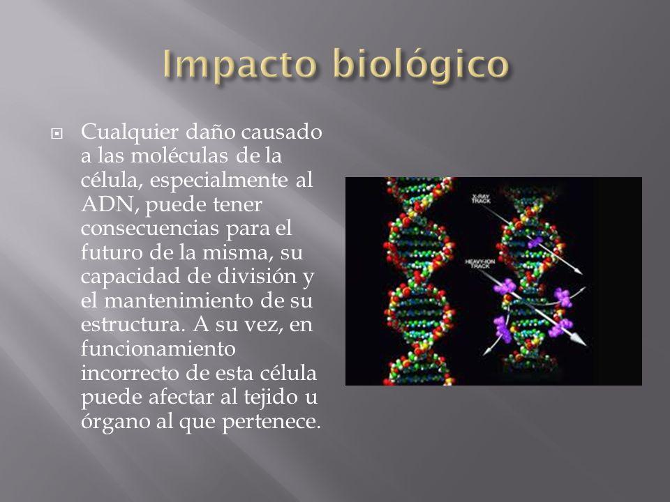 Impacto biológico
