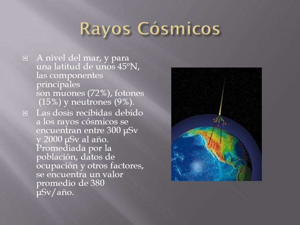 Rayos Cósmicos A nivel del mar, y para una latitud de unos 45ºN, las componentes principales son muones (72%), fotones (15%) y neutrones (9%).