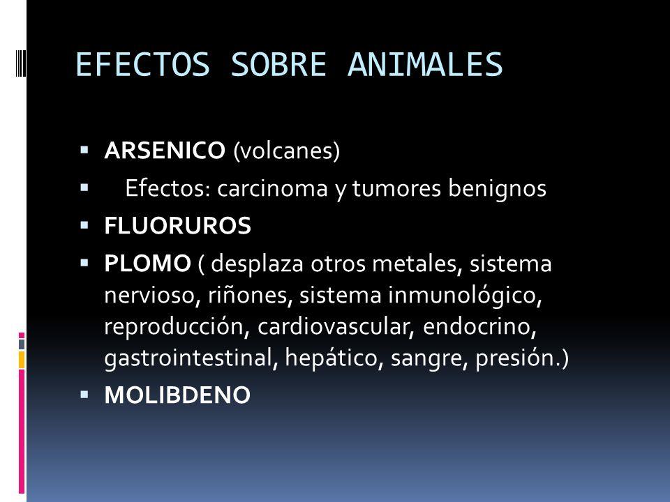 EFECTOS SOBRE ANIMALES