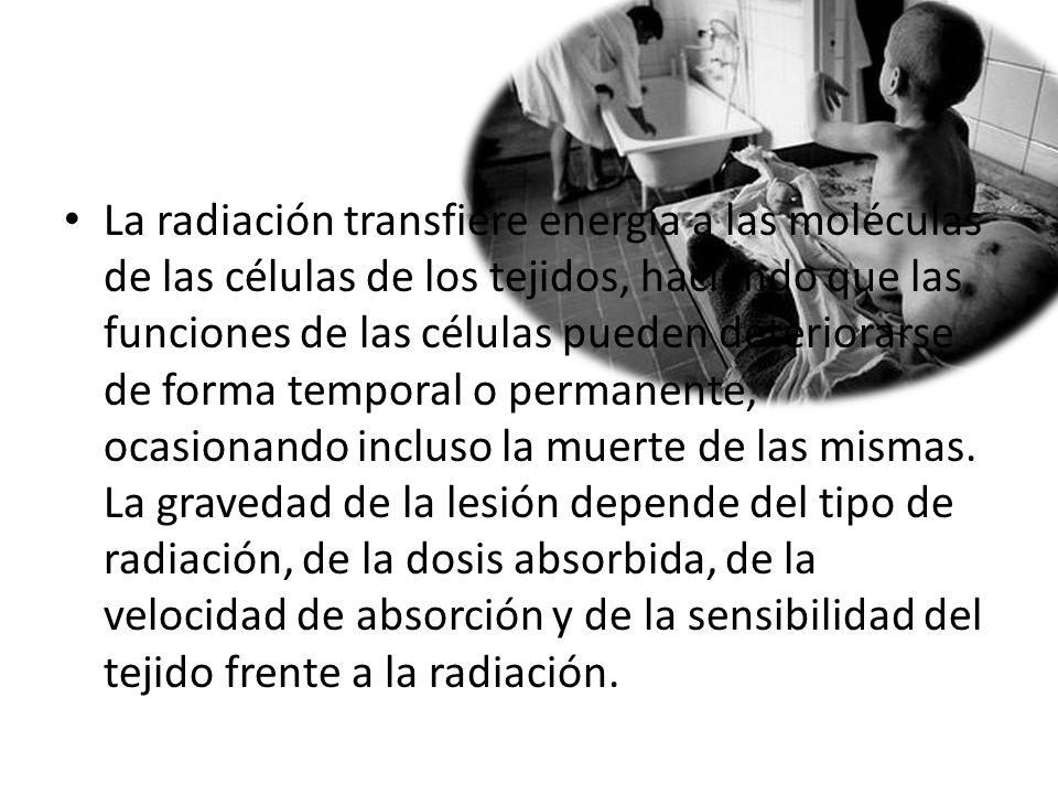 La radiación transfiere energía a las moléculas de las células de los tejidos, haciendo que las funciones de las células pueden deteriorarse de forma temporal o permanente, ocasionando incluso la muerte de las mismas.