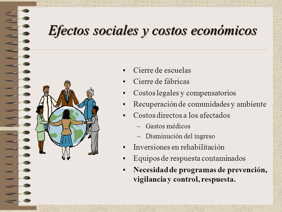 Efectos sociales y costos económicos