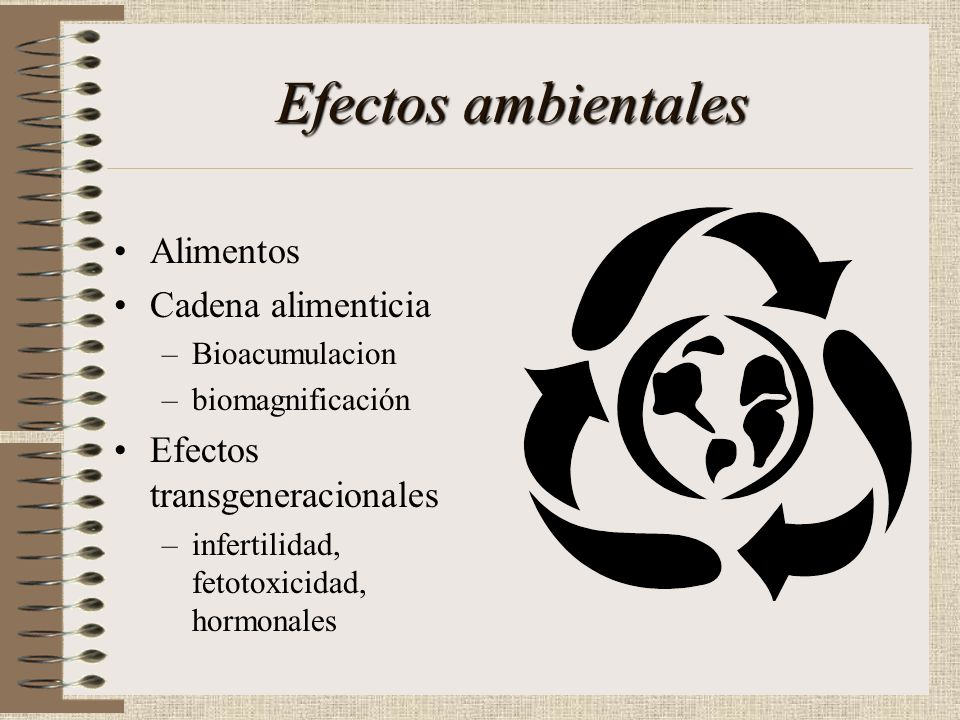 Efectos ambientales Alimentos Cadena alimenticia