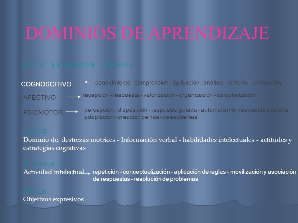 DOMINIOS DE APRENDIZAJE
