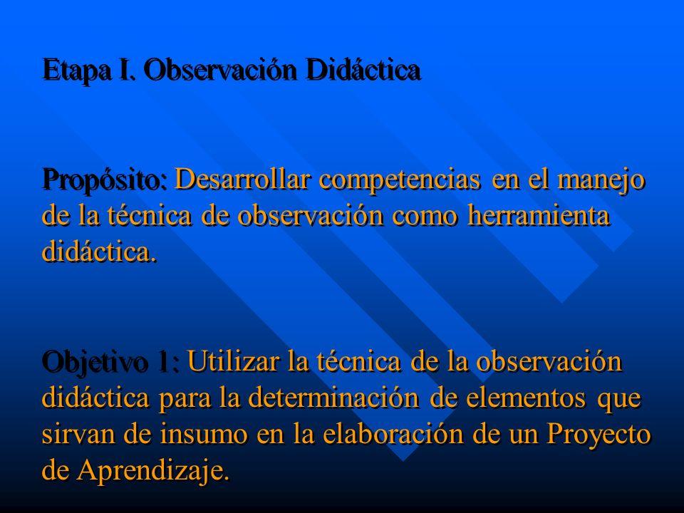 Etapa I. Observación Didáctica