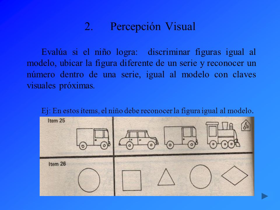 Percepción Visual