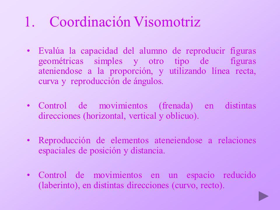 Coordinación Visomotriz