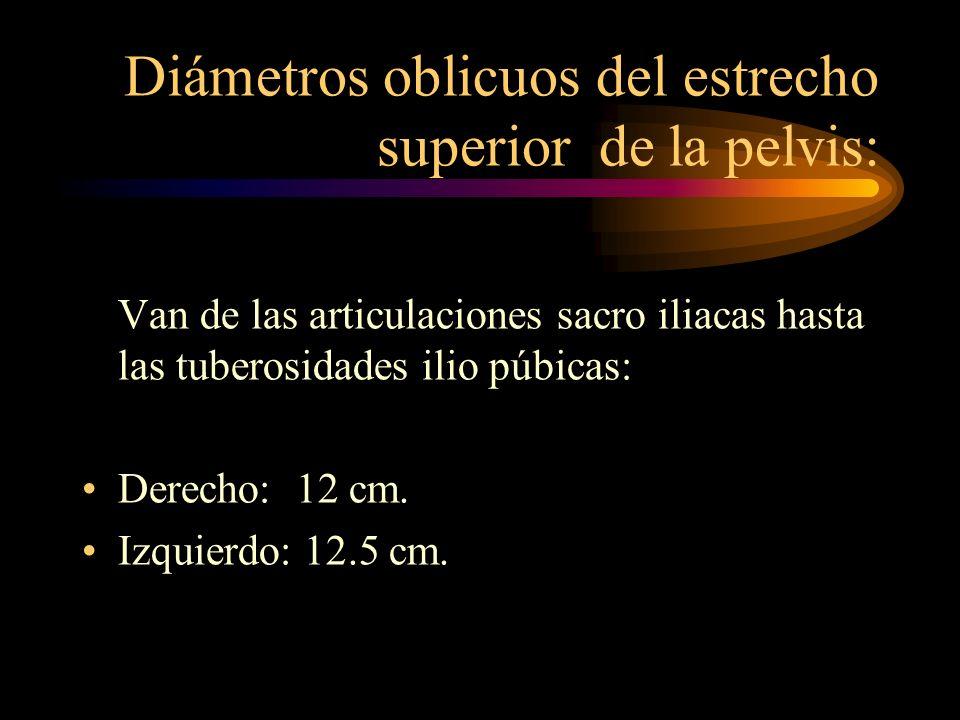 Diámetros oblicuos del estrecho superior de la pelvis: