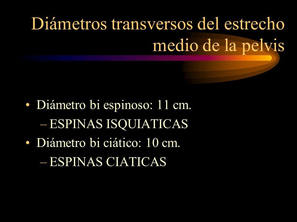 Diámetros transversos del estrecho medio de la pelvis