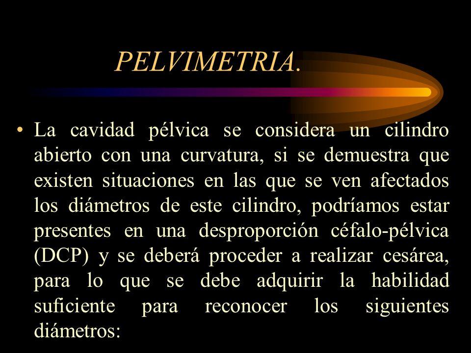 PELVIMETRIA.