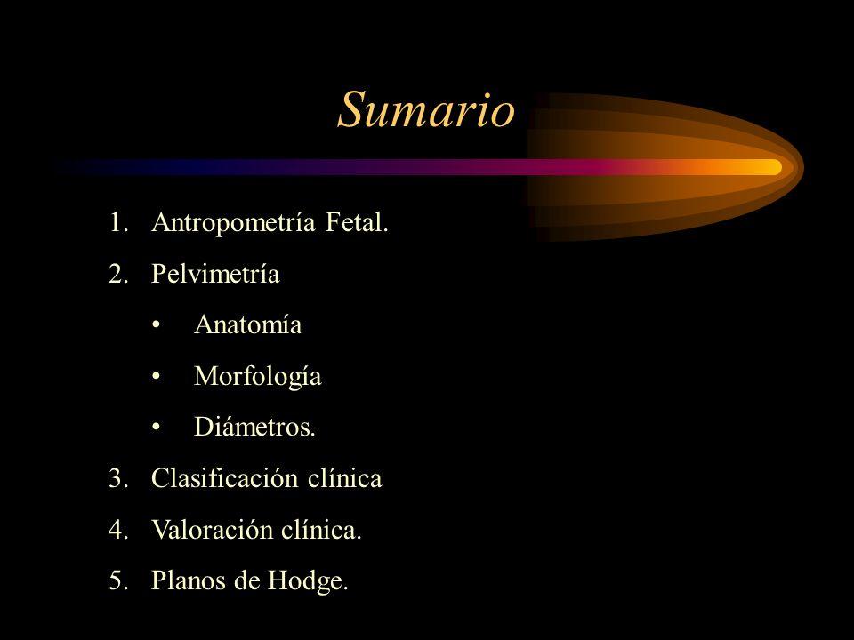 Sumario Antropometría Fetal. Pelvimetría Anatomía Morfología
