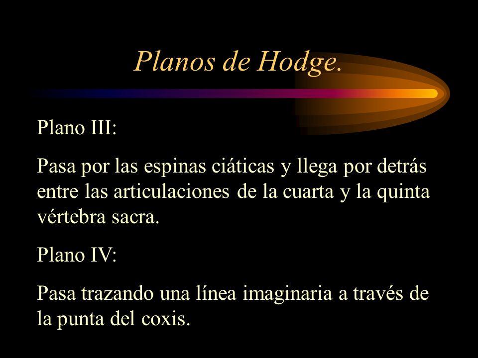 Planos de Hodge. Plano III: