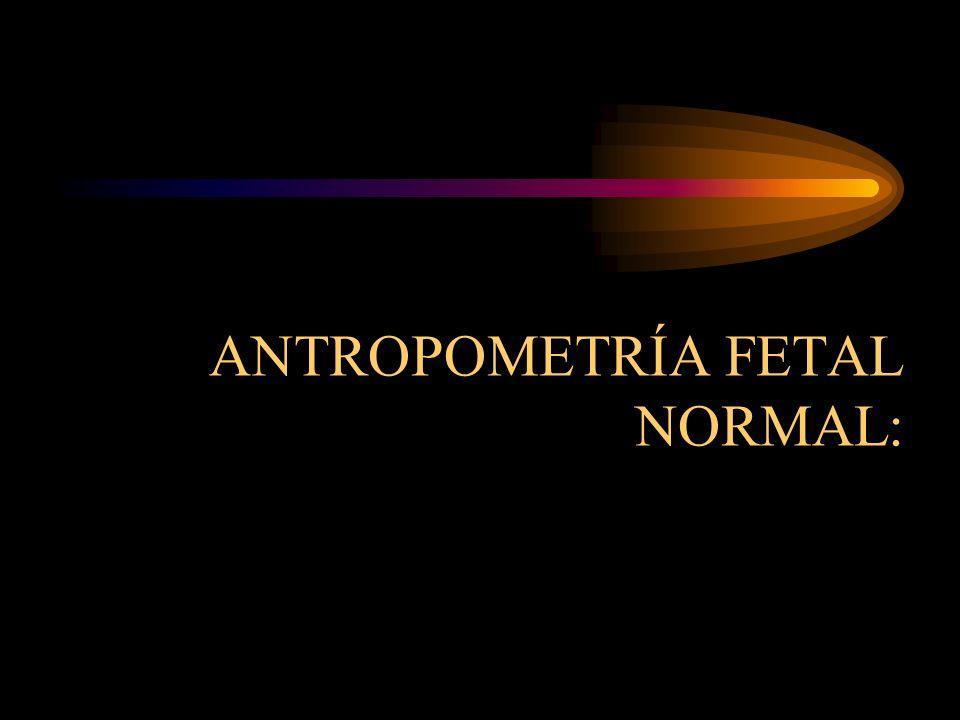 ANTROPOMETRÍA FETAL NORMAL: