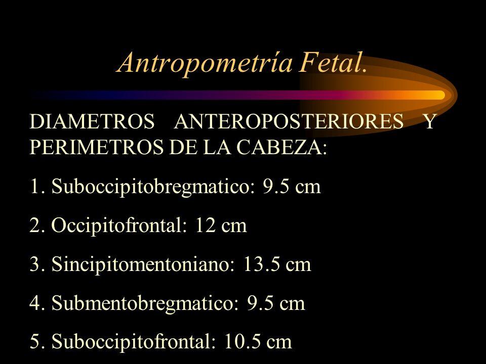 Antropometría Fetal. DIAMETROS ANTEROPOSTERIORES Y PERIMETROS DE LA CABEZA: 1. Suboccipitobregmatico: 9.5 cm.