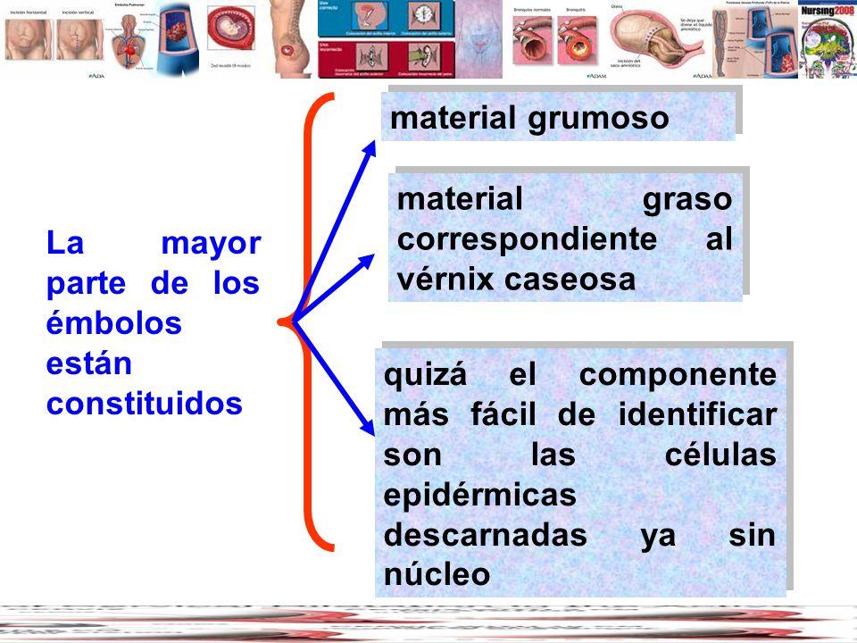 material grumoso material graso correspondiente al vérnix caseosa. La mayor parte de los émbolos están constituidos.