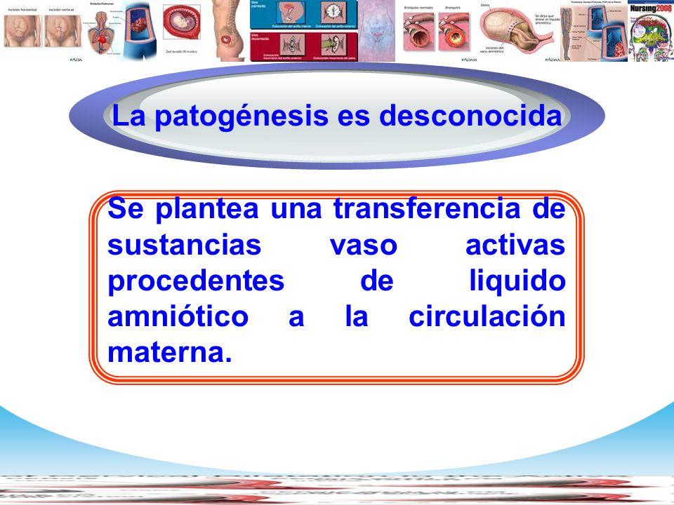 La patogénesis es desconocida