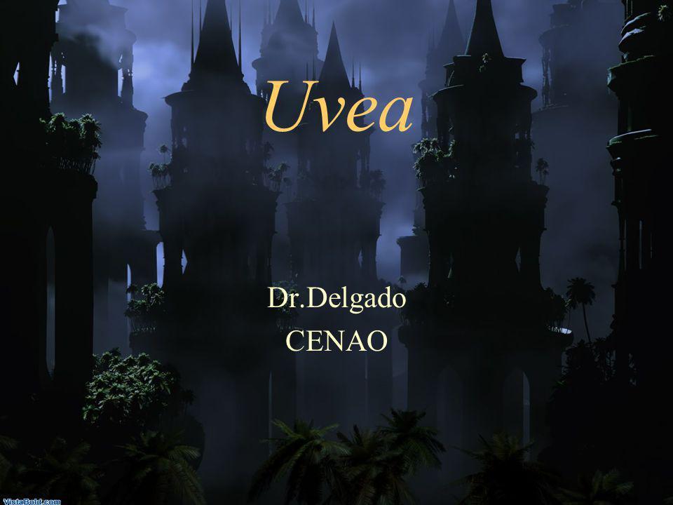 Uvea Dr.Delgado CENAO