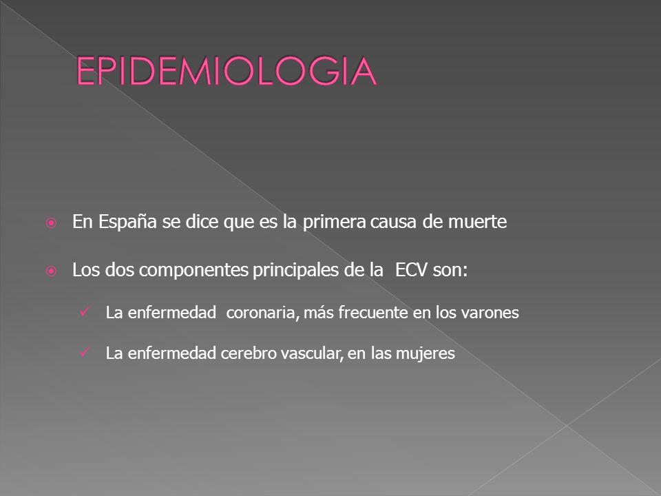 EPIDEMIOLOGIA En España se dice que es la primera causa de muerte